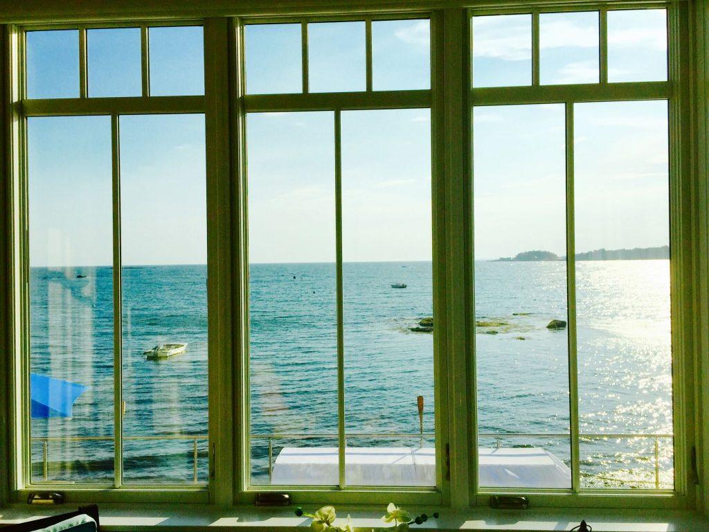 Pantani and sons glass windows